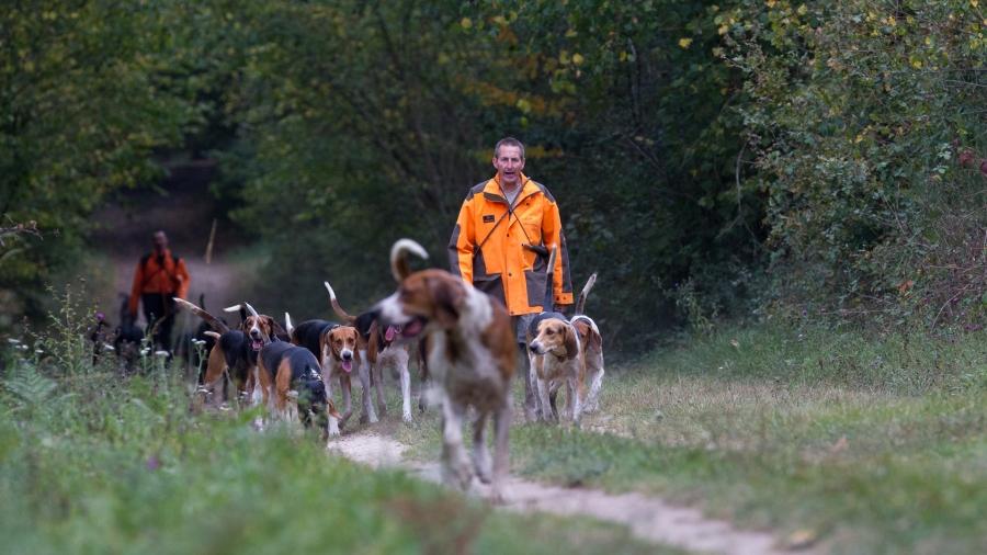 Divers chasses parc de Launay (48 sur 120)